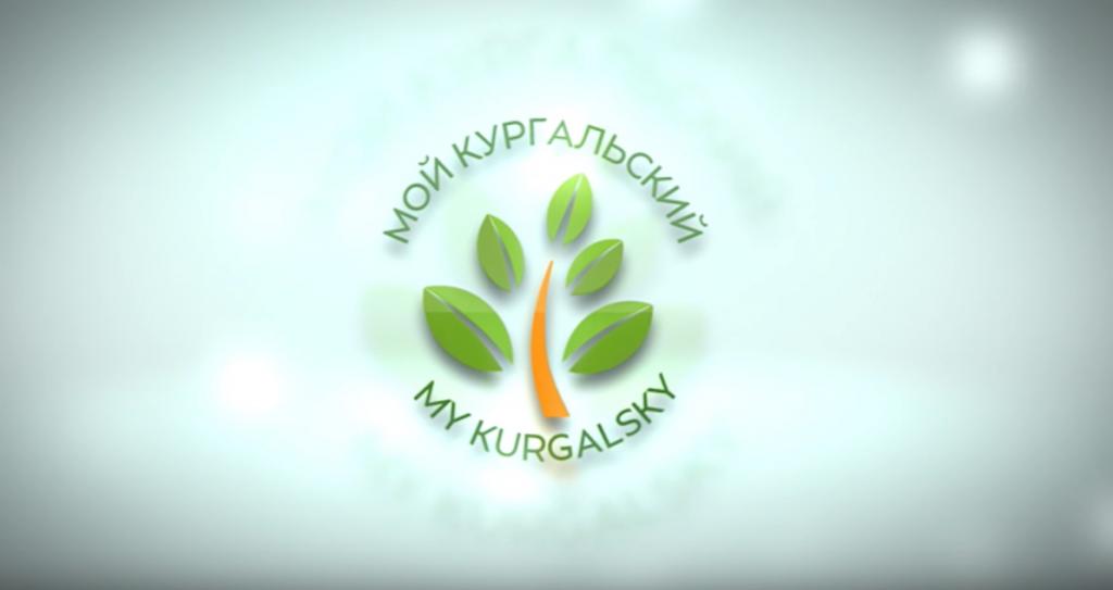 Эколого-просветительский проект «Мой Кургальский»