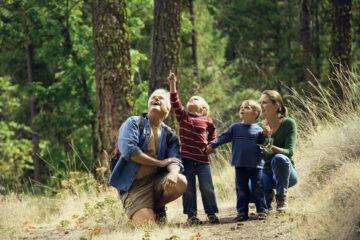 ВООП по Ленобласти готовит пять аудиогидов по особо охраняемым природным территориям