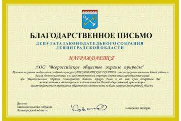 Депутат Заксобрания Ленобласти поздравила ВООП с достойными результатами работы в 2020 году