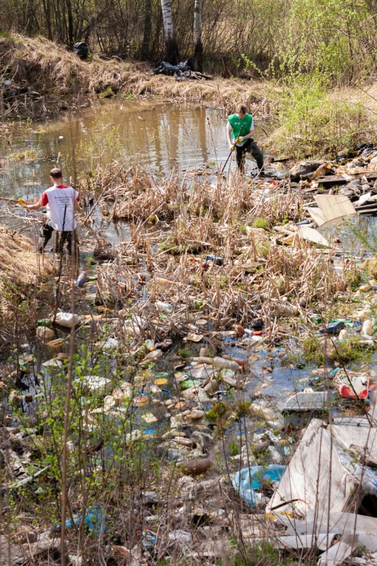 ВООП по Ленобласти провело уборку территории памятника природы «Колтушские высоты» в рамках Всероссийской акции «ГЕН УБОРКИ»