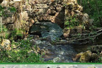 В природном заказнике «Гряда Вярямянселькя» откроют живописный экологический маршрут