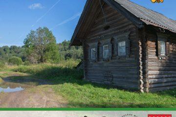 В Вепсском лесу по берегам Капшозеро откроют живописные маршруты длиной 11 км