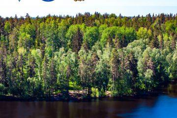 Наталья Калягина рассказала о проектировании живописных маршрутов на Ястребином озере